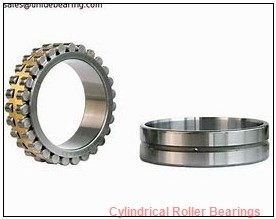 FAG NJ2219-E-M1 Cylindrical Roller Bearings