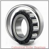 Link-Belt M5206UM Cylindrical Roller Bearings