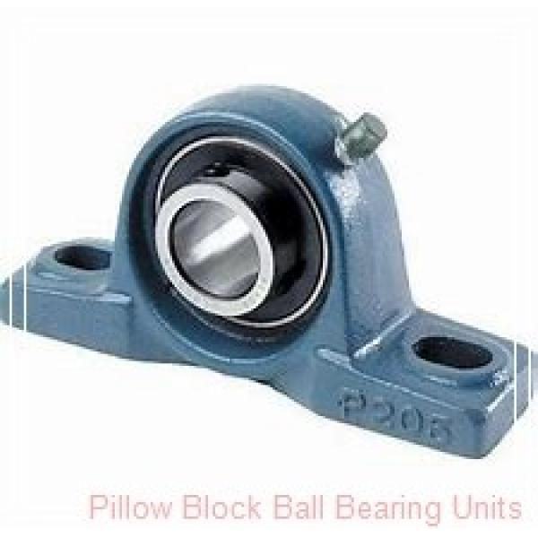AMI MUCTBL206-19W Pillow Block Ball Bearing Units #1 image