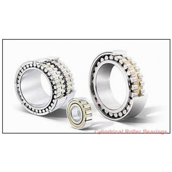 300 mm x 380 mm x 80 mm  INA SL014860 Cylindrical Roller Bearings #1 image