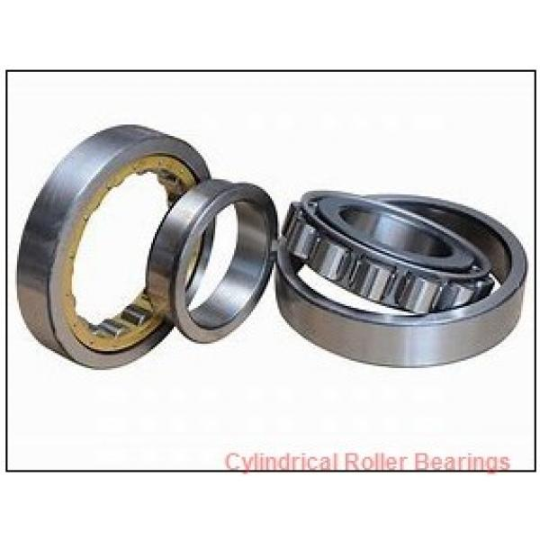 240 mm x 300 mm x 60 mm  INA SL014848 Cylindrical Roller Bearings #1 image