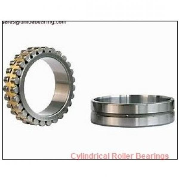 FAG NJ2219-E-M1 Cylindrical Roller Bearings #1 image
