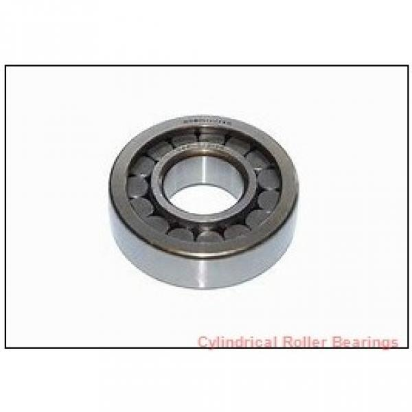 130 mm x 180 mm x 50 mm  INA SL014926 Cylindrical Roller Bearings #1 image